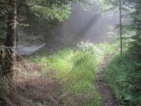 Cesta na Velký Choč