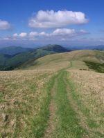 cestou z Ostredku na Suchý vrch.....