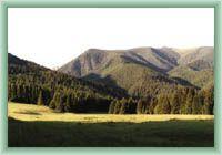 Jalovecká dolina